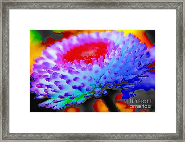 Floral Rainbow Splattered In Thick Paint Framed Print