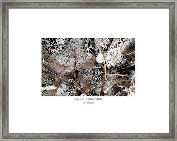 Floral Structure Framed Print