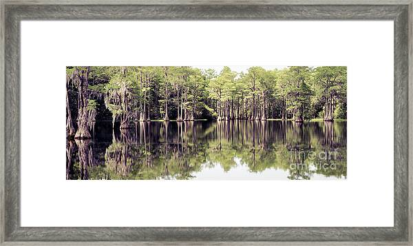 Florida Beauty 10 - Tallahassee Florida Framed Print