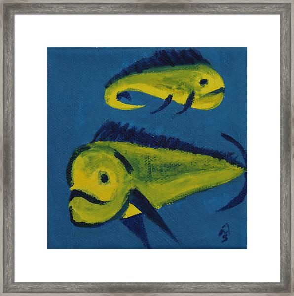 Florida Fish Framed Print