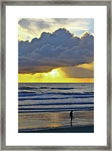 Florida Morning Framed Print