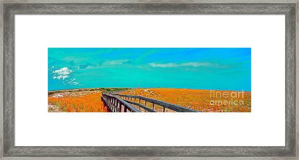Florida Sand Dunes Atlantic New Smyrna Beach Framed Print