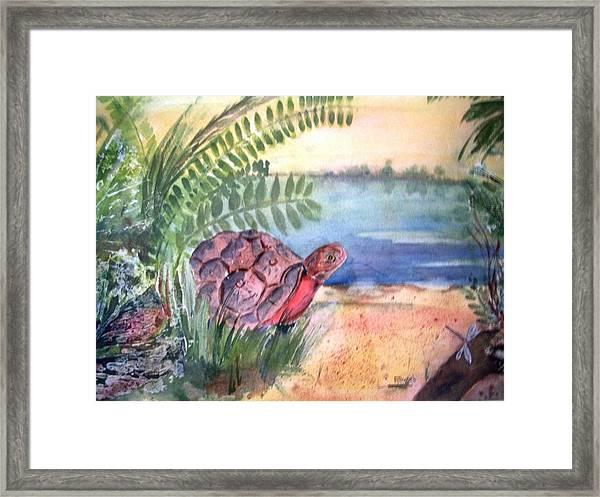 Florida Seacoast Framed Print