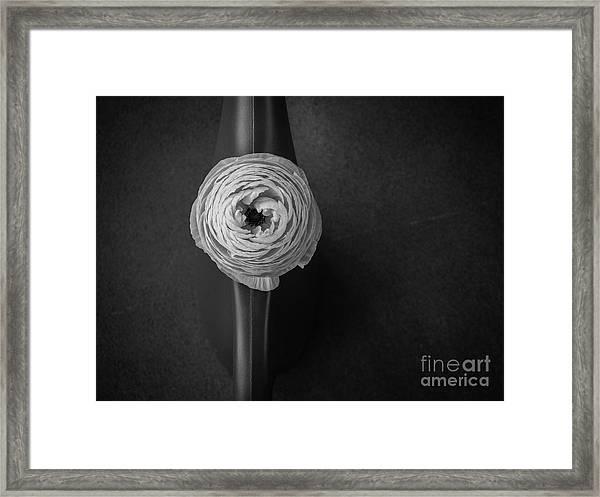 Flower #2059 Framed Print