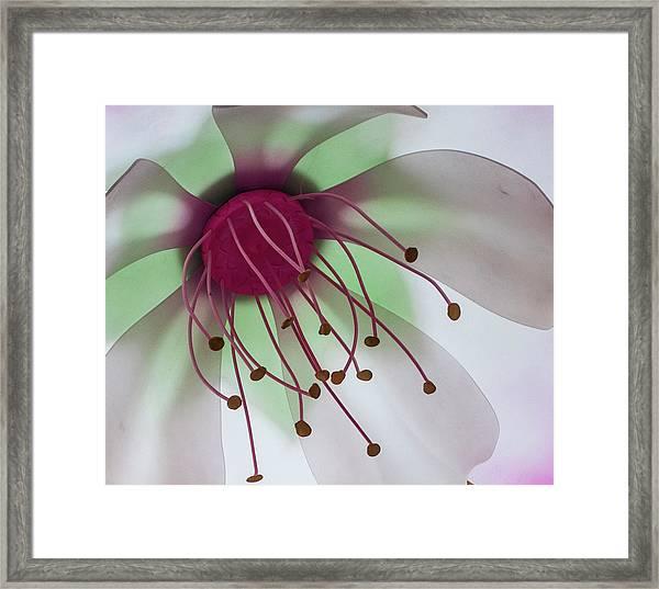 Flower Art Framed Print