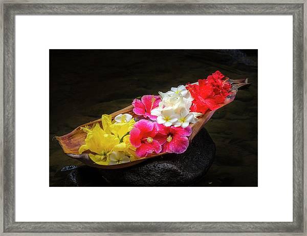 Flower Boat Framed Print