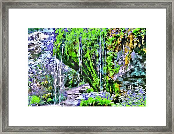 Flower Falls Framed Print