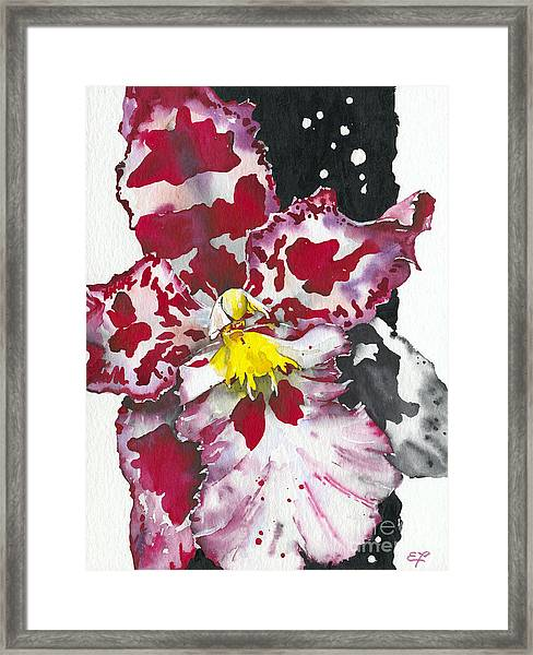 Flower Orchid 11 Elena Yakubovich Framed Print
