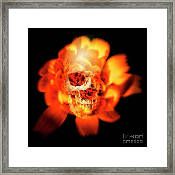Flower Skull Framed Print