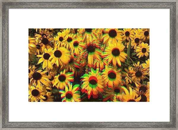 Flower Trip Framed Print