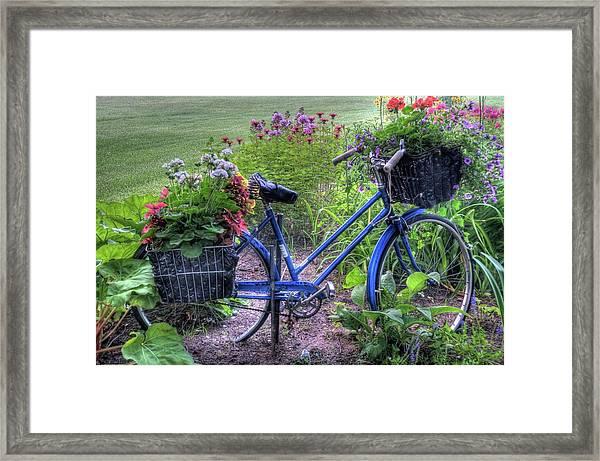 Flowered Bicycle Framed Print