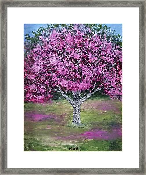 Flowering Tree Framed Print