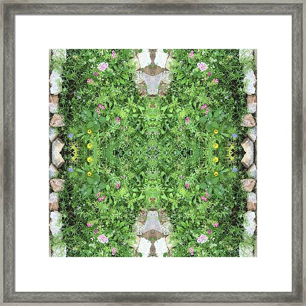 Flowers And Stones I Framed Print