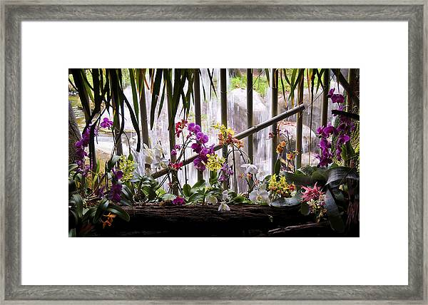 Flowers And Waterfall Framed Print