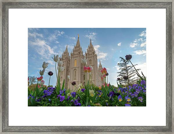 Flowers At Temple Square Framed Print