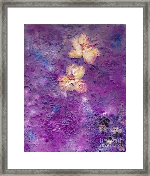Flowers From The Garden Framed Print