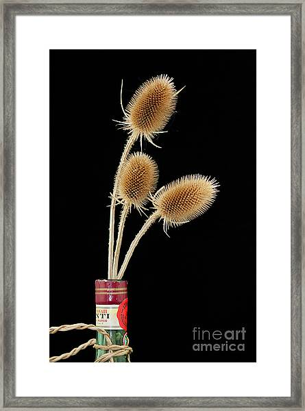 Flowers In A Bottle Framed Print