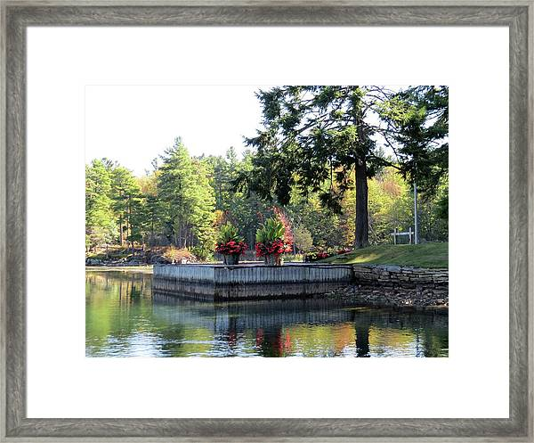 Flowers On The Rift Framed Print