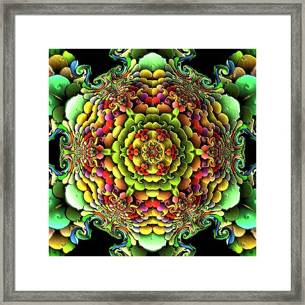 Framed Print featuring the digital art Flowerscales 61 by Robert Thalmeier