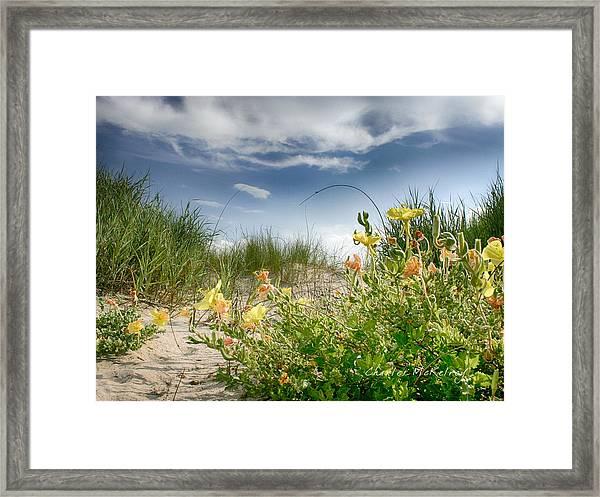 Flowery Dunes Framed Print