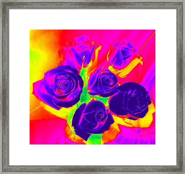 Fluorescent Roses Framed Print