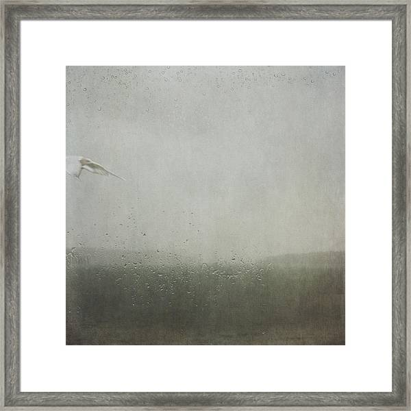 Fly Between The Raindrops Framed Print
