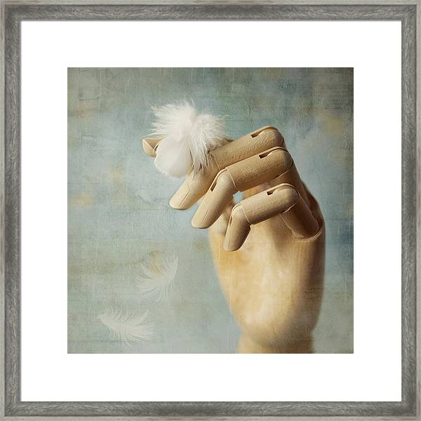 Fly Far Away Framed Print