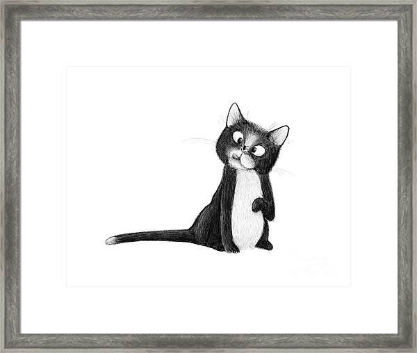 Fly On Cat Framed Print