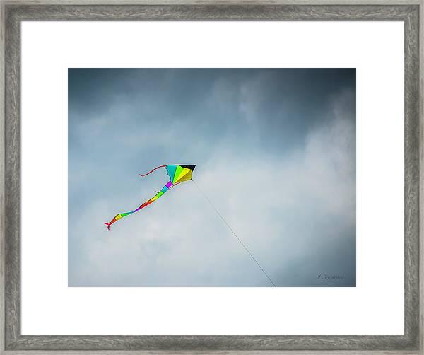Flying Colors Framed Print