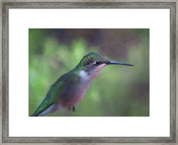 Flying Flower Framed Print