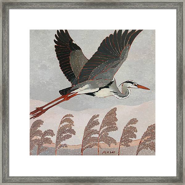Flying Heron Framed Print