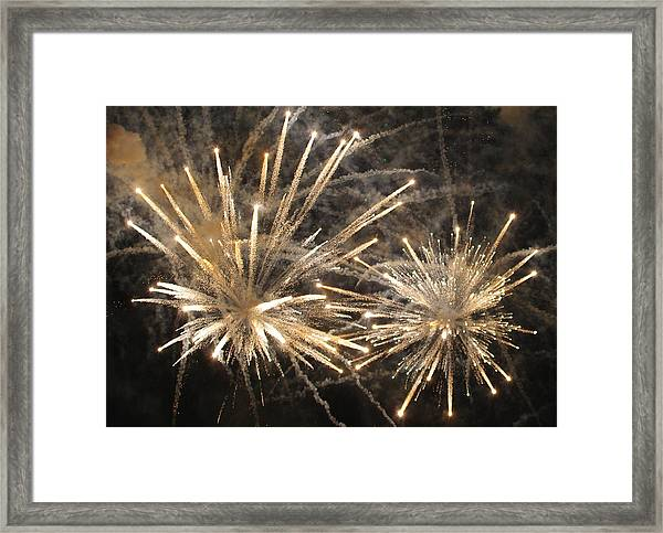Flying Neutrons Framed Print