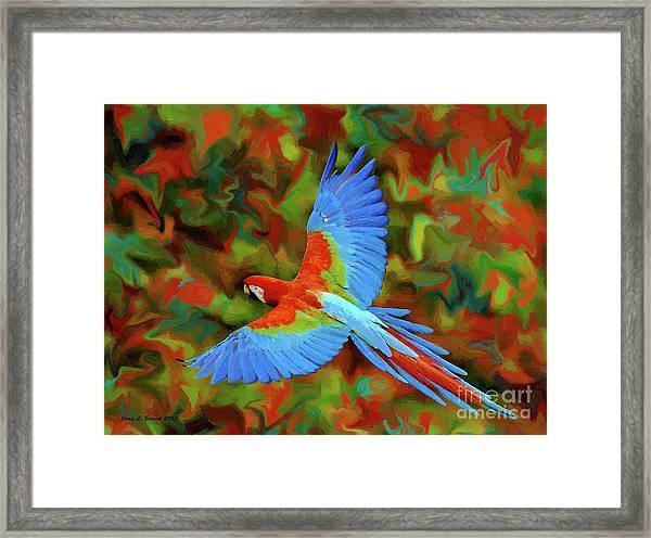 Flying Parrot Framed Print