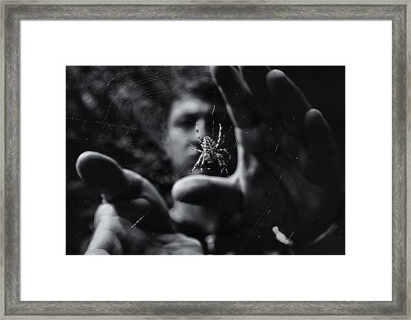 Focus Framed Print by Mario Pejakovic