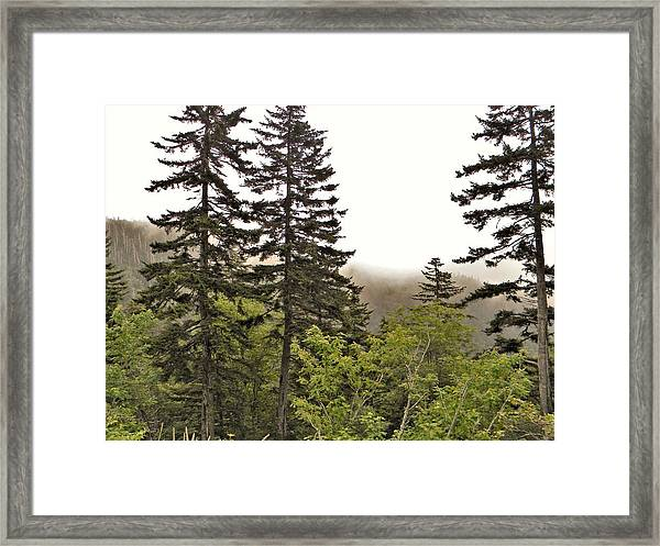 Fog On The Mountain Framed Print
