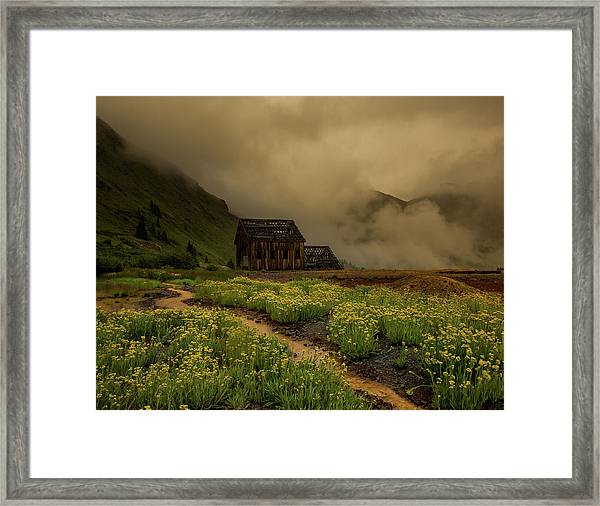 Fog Rolls Over The Frisco Mill With Summer Wildflowers Framed Print