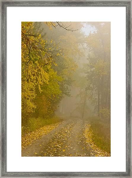 Foggy Autumn Morn Framed Print
