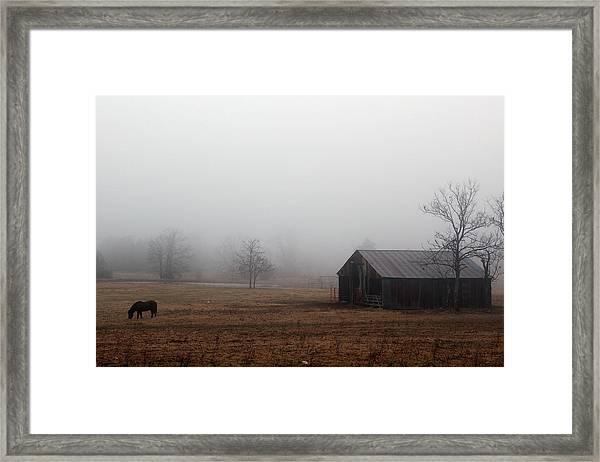 Foggy Barnyard Framed Print