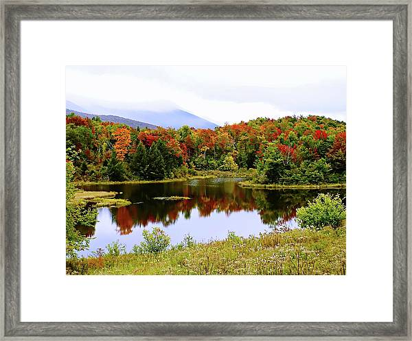 Foggy Day In Vermont Framed Print