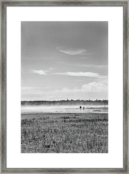Foggy Day On A Marsh Framed Print