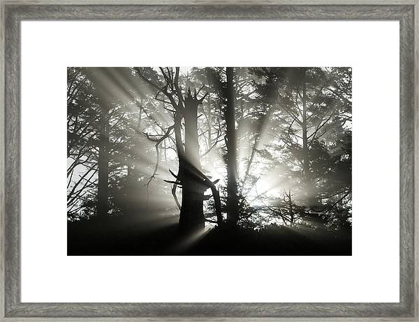 Foggy Flares Framed Print