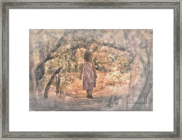 Foggy Morning Light Framed Print