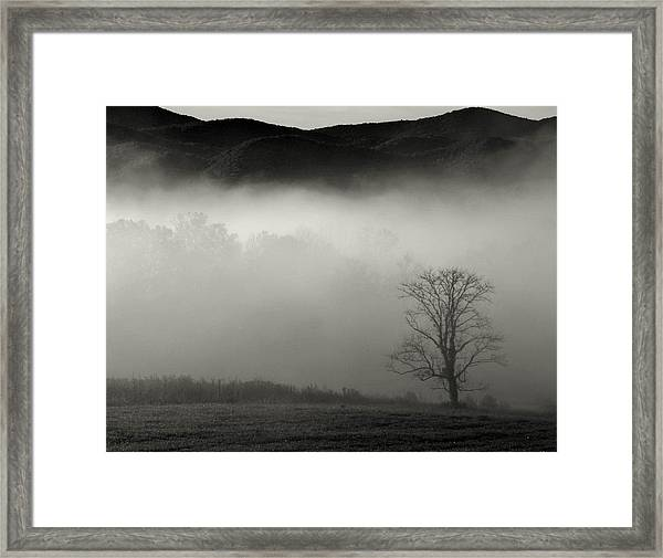 Foggy Mountain-tennessee Framed Print