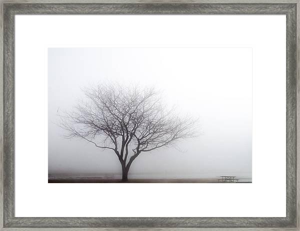 Foggy Picnic Framed Print