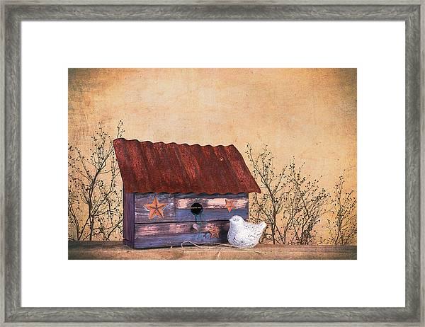 Folk Art Birdhouse Still Life Framed Print