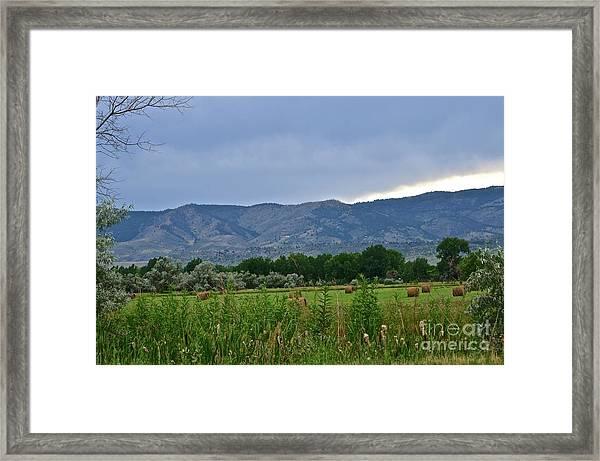 Foothills Of Fort Collins Framed Print
