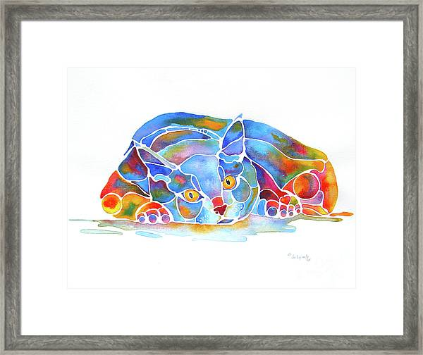 For Cat Lovers And Crazy Cat Ladies Framed Print by Jo Lynch