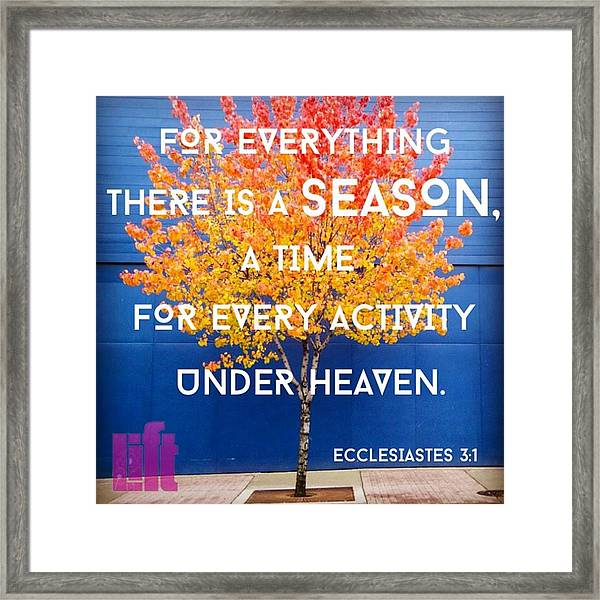 For Everything There Is A Season, A Framed Print