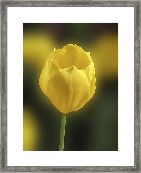 For Mom Too Framed Print