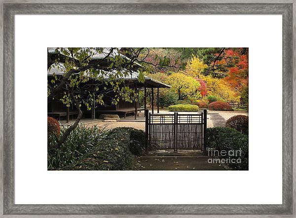 Forbidden Garden Framed Print